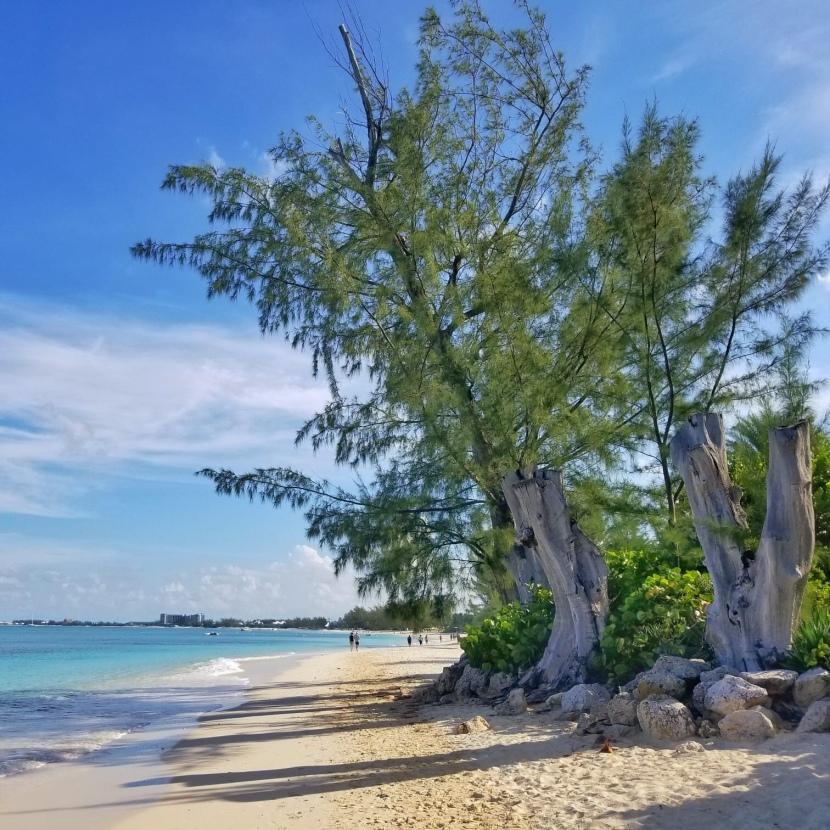 Cayman style