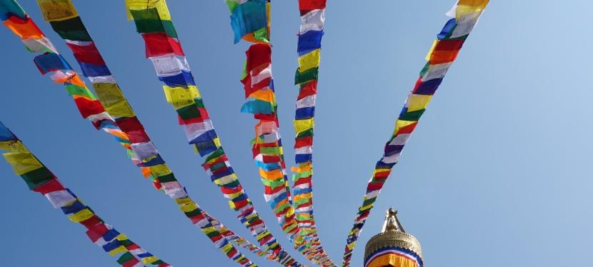 Turtle Trekkers and Kathmandu – the adventurebegins